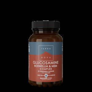 Glucosamine, Boswellia & MSM Complex