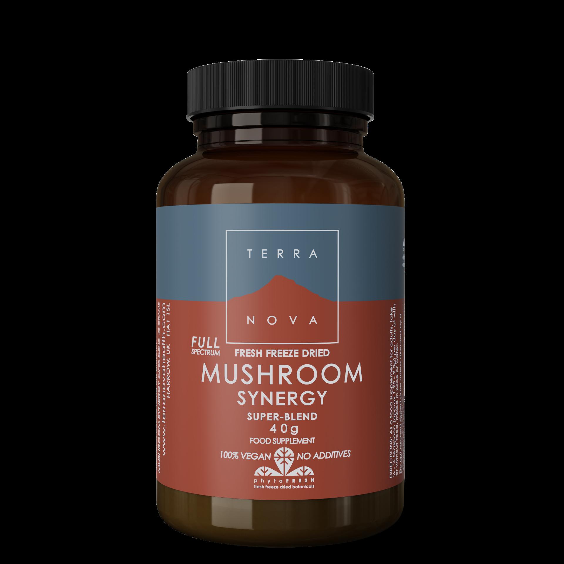 Full Spectrum Mushroom Synergy 50 kaps Terranova